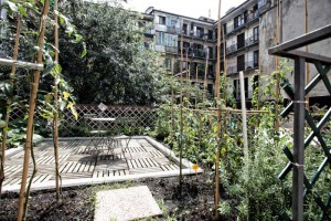 orti-alti-the-vegetable-garden3