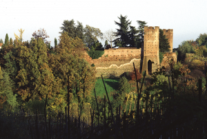 san-colombano-Castello-Valdemagna-4